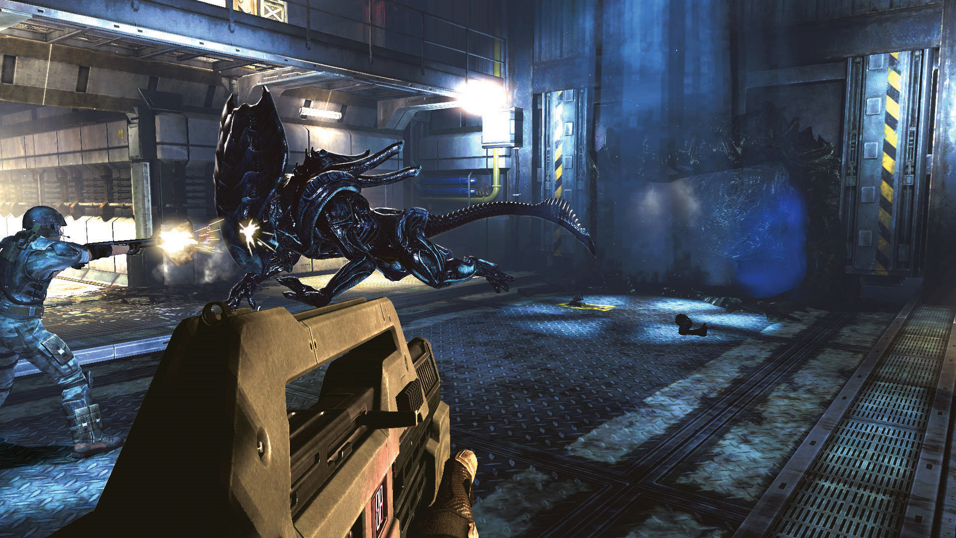 Download Torrent Aliens Colonial Marines Pc